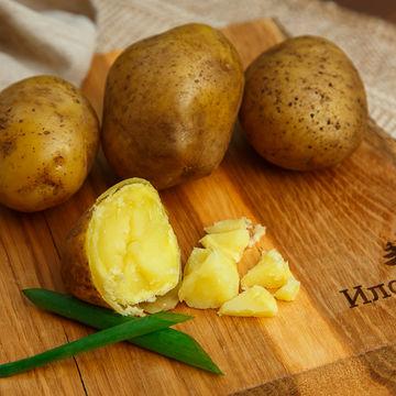 Картофель рассыпчатый отборный 2 кг